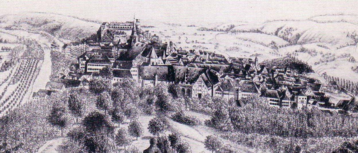Panorama von Tübingen
